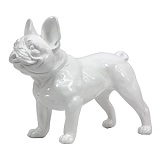French Bulldog Standing - White